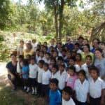 Cedros group